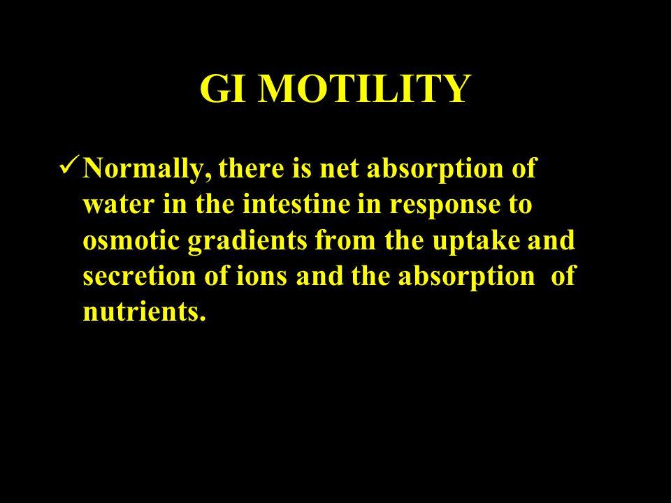GI MOTILITY