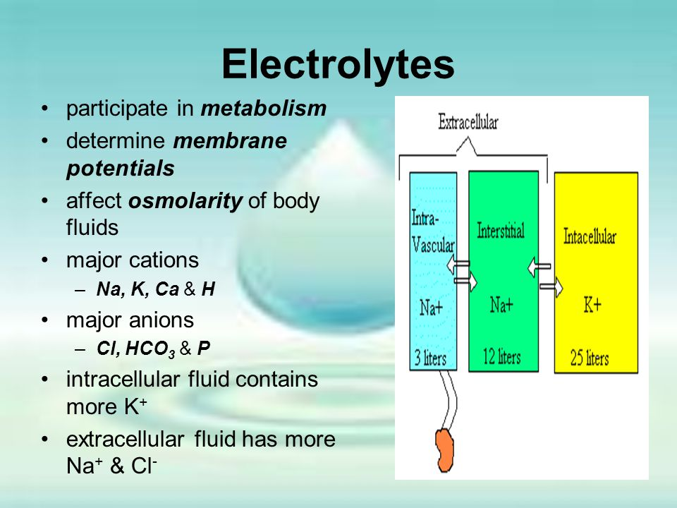 Electrolytes participate in metabolism determine membrane potentials