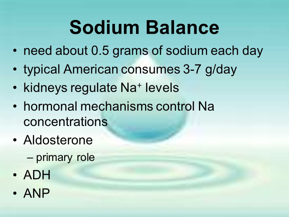 Sodium Balance need about 0.5 grams of sodium each day