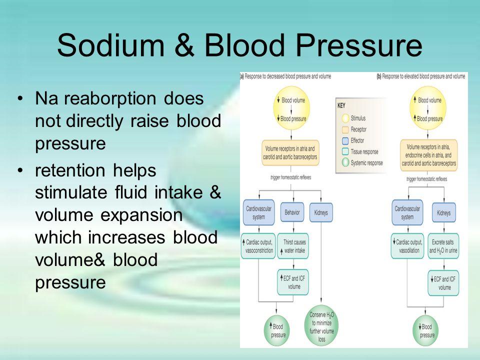 Sodium & Blood Pressure