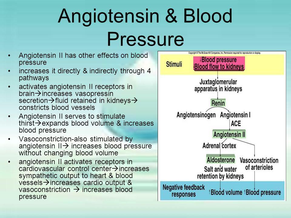 Angiotensin & Blood Pressure
