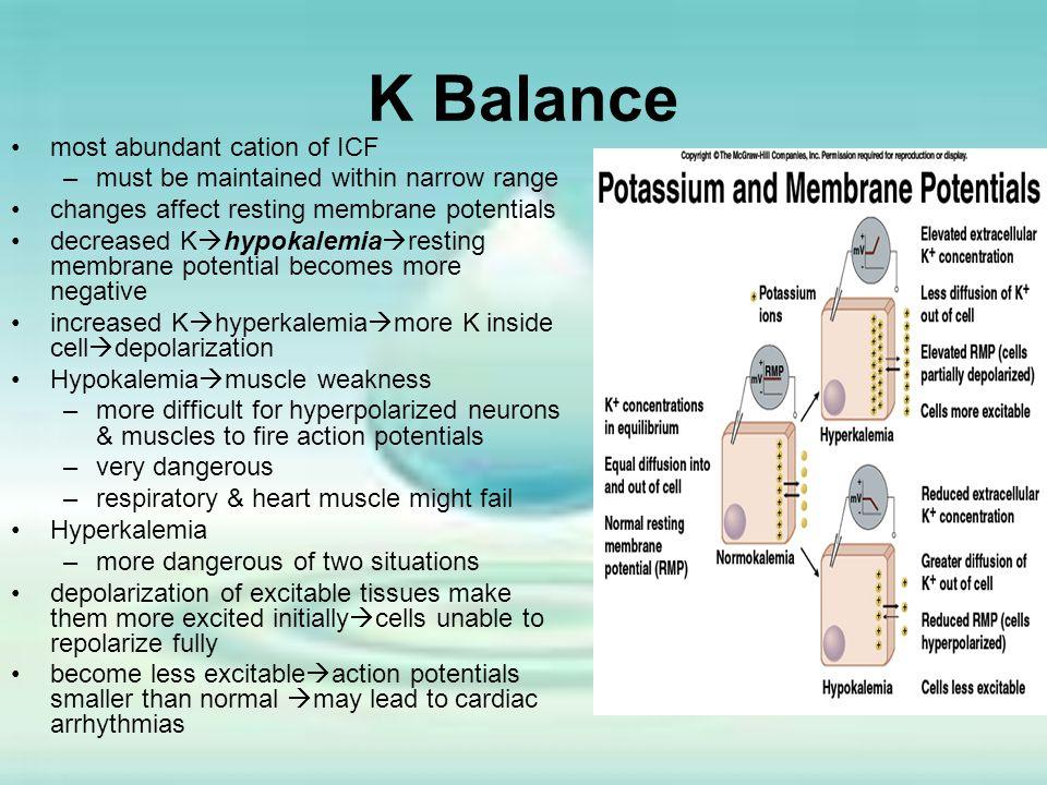 K Balance most abundant cation of ICF