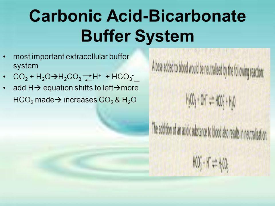 Carbonic Acid-Bicarbonate Buffer System