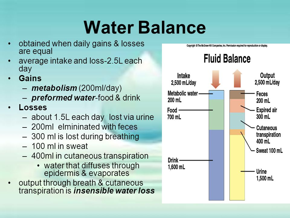 Water Balance obtained when daily gains & losses are equal