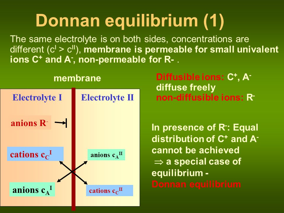 Donnan equilibrium (1)