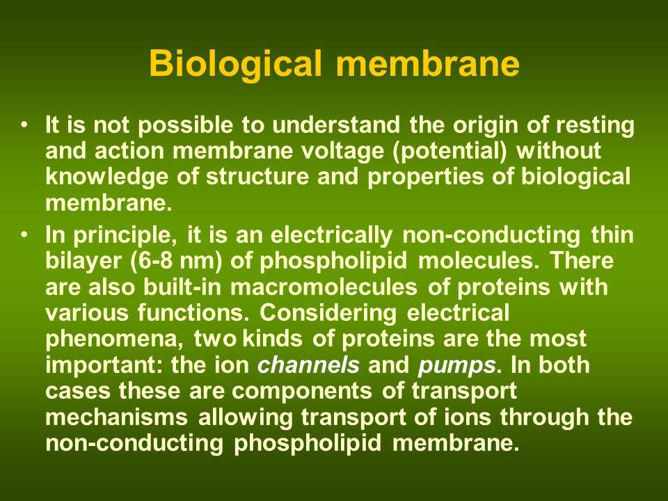 Biological membrane