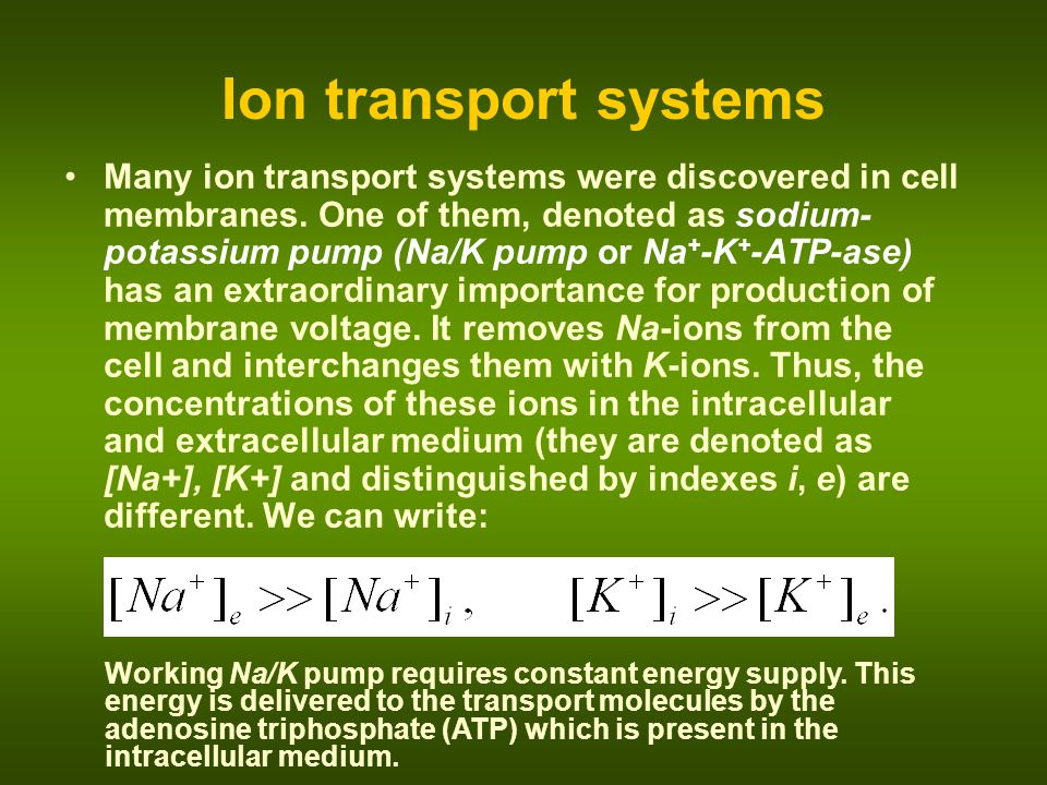 Ion transport systems
