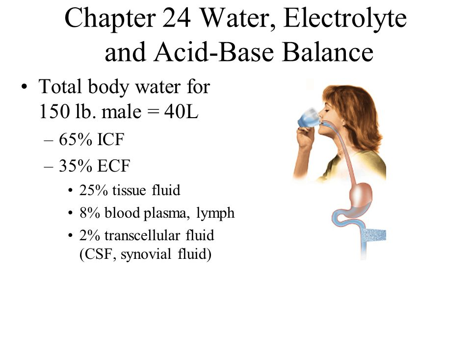 fluid electrolyte and acid base balance introduction to body fluids essay Fluids & electrolytes: introduction to body fluids fluids & electrolytes: introduction to body in the body, the majority of fluid is in which of the following.