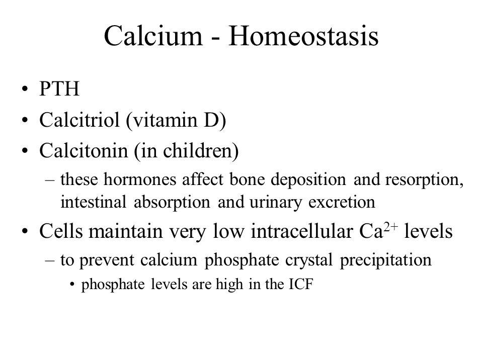 Calcium - Homeostasis PTH Calcitriol (vitamin D)