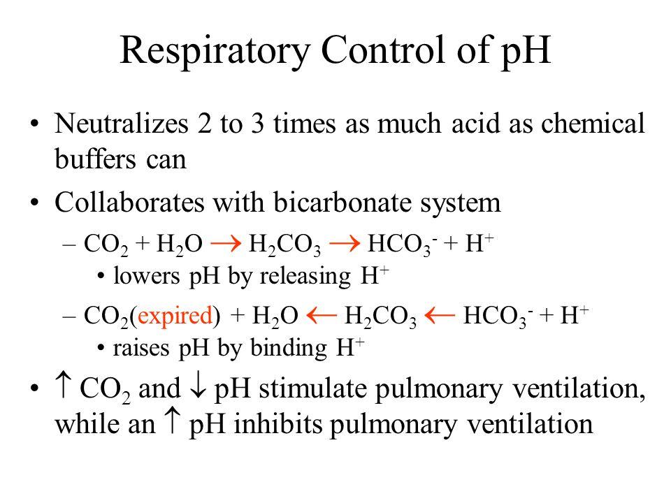 Respiratory Control of pH