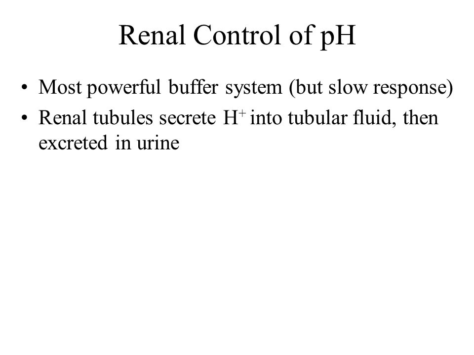 Renal Control of pH Most powerful buffer system (but slow response)