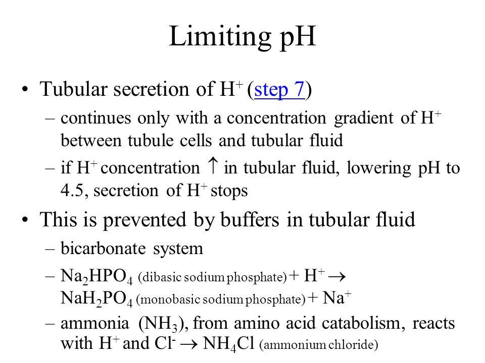 Limiting pH Tubular secretion of H+ (step 7)