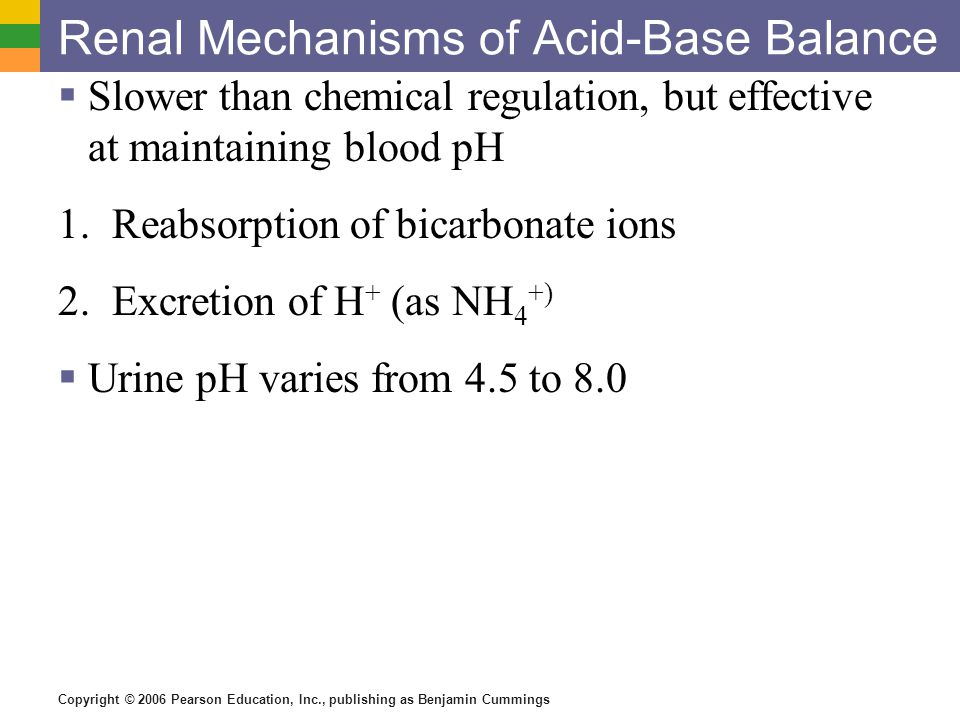 Renal Mechanisms of Acid-Base Balance