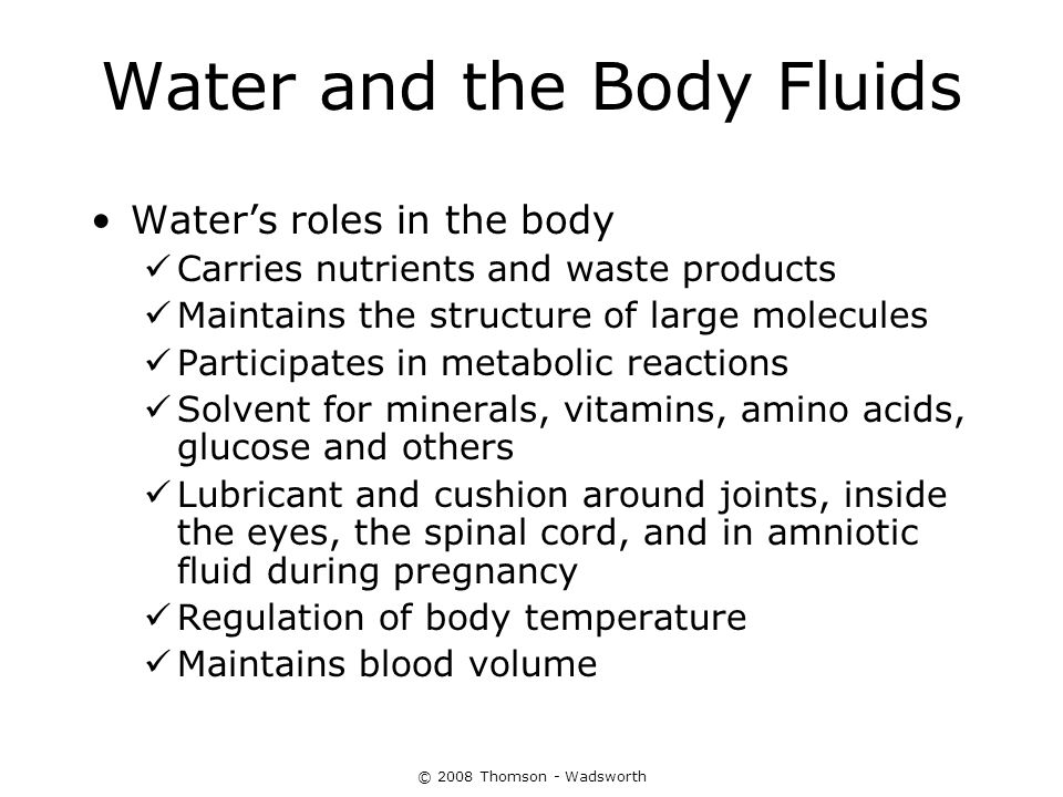 Water and the Body Fluids