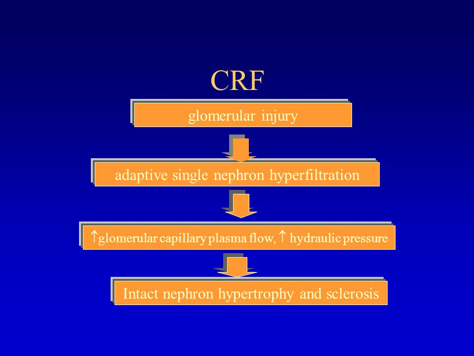 CRF glomerular injury adaptive single nephron hyperfiltration