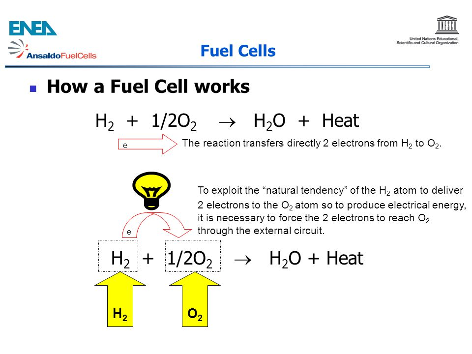 How a Fuel Cell works H2 + 1/2O2  H2O + Heat H2 + 1/2O2  H2O + Heat