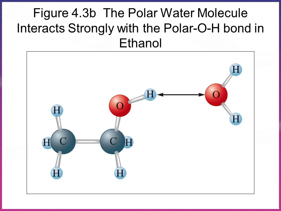 Figure 4.3b The Polar Water Molecule Interacts Strongly with the Polar-O-H bond in Ethanol