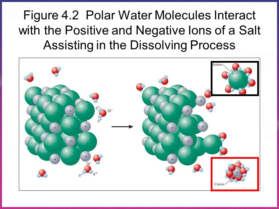 Figure 4.2 Polar Water Molecules Interact with the Positive and Negative Ions of a Salt Assisting in the Dissolving Process