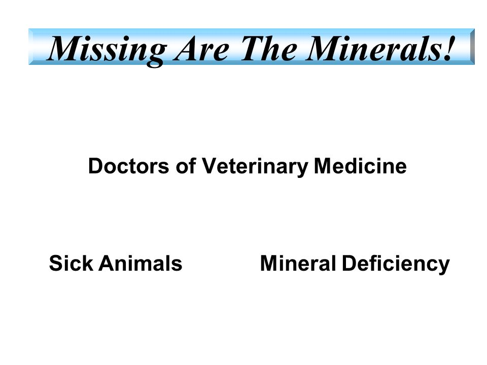 Doctors of Veterinary Medicine