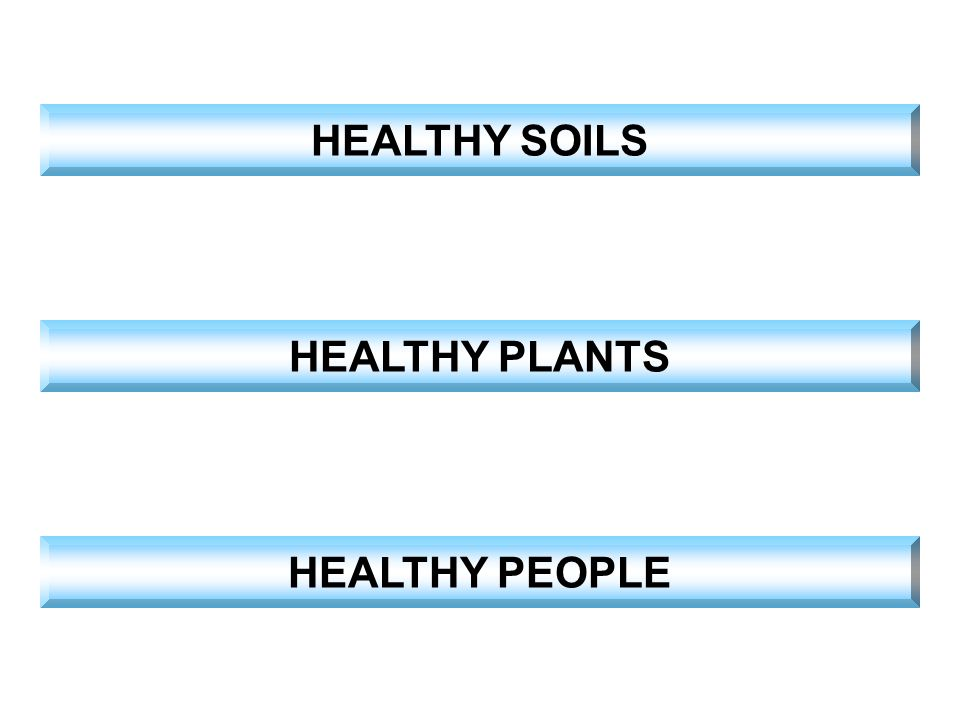 HEALTHY SOILS HEALTHY PLANTS HEALTHY PEOPLE
