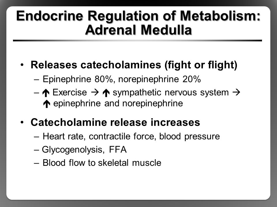 Endocrine Regulation of Metabolism: Adrenal Medulla