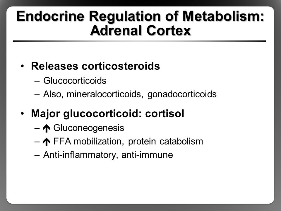 Endocrine Regulation of Metabolism: Adrenal Cortex