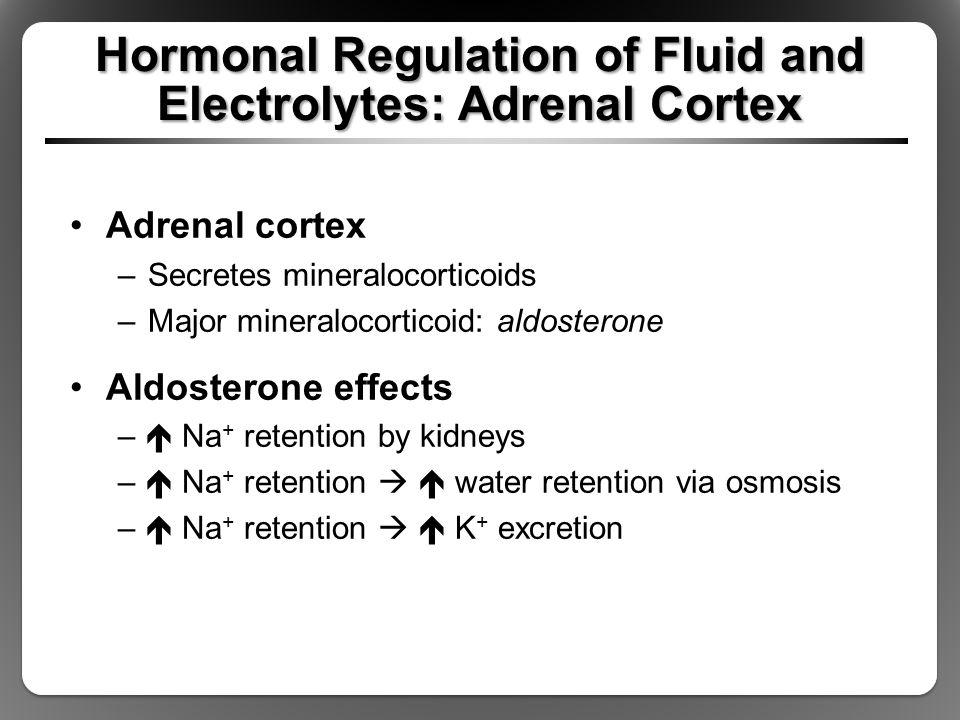 Hormonal Regulation of Fluid and Electrolytes: Adrenal Cortex