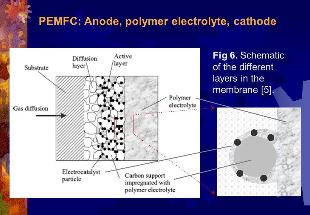 PEMFC: Anode, polymer electrolyte, cathode