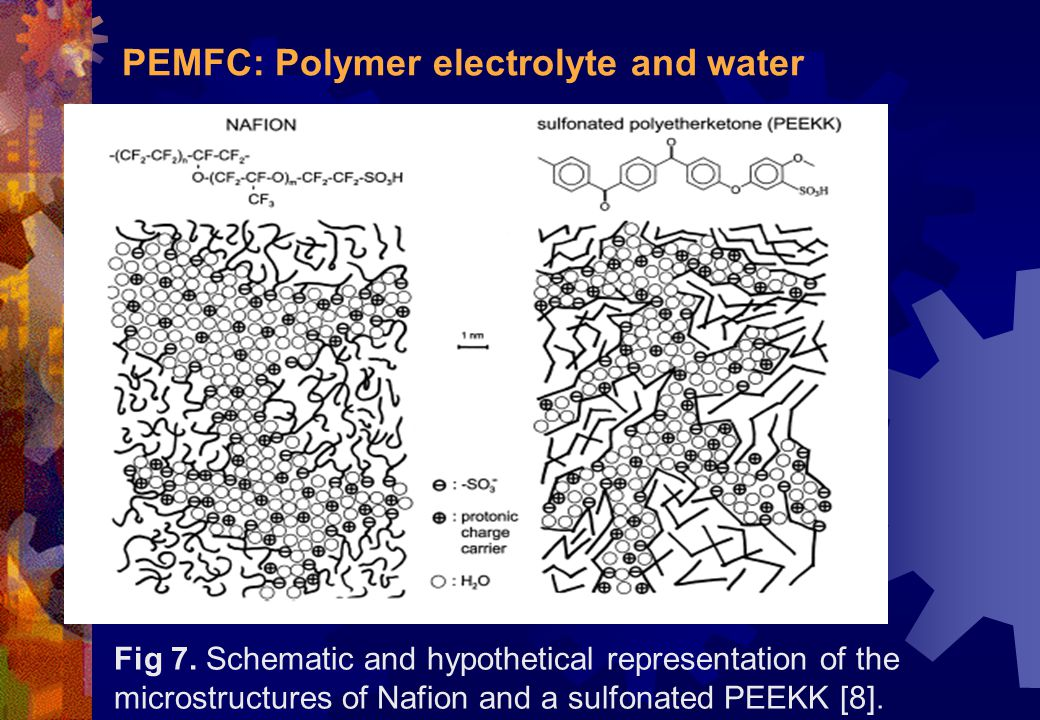 PEMFC: Polymer electrolyte and water