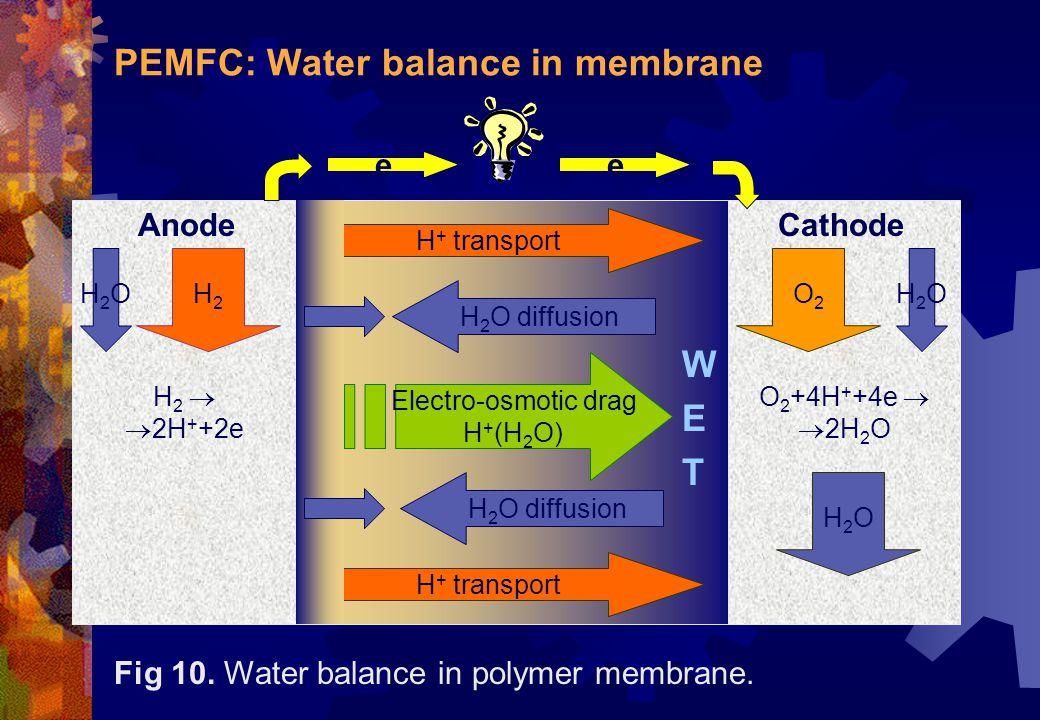 PEMFC: Water balance in membrane