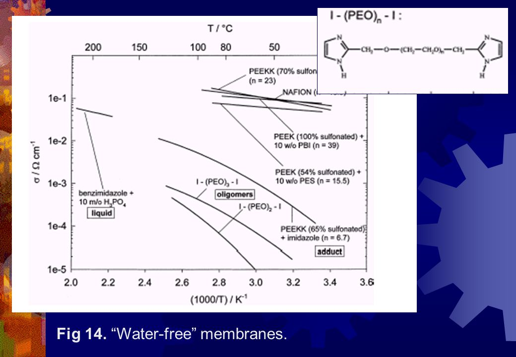 Fig 14. Water-free membranes.