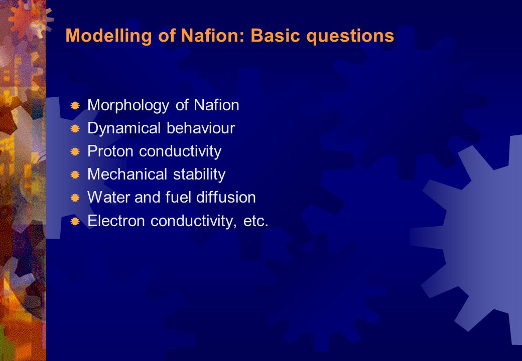 Modelling of Nafion: Basic questions