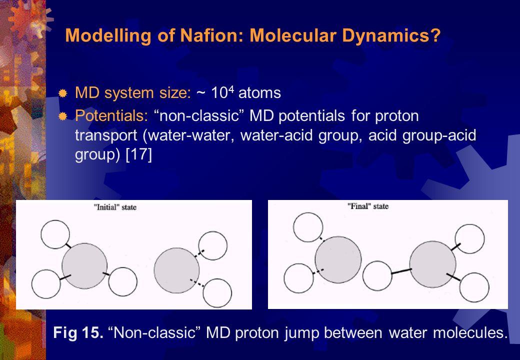 Modelling of Nafion: Molecular Dynamics