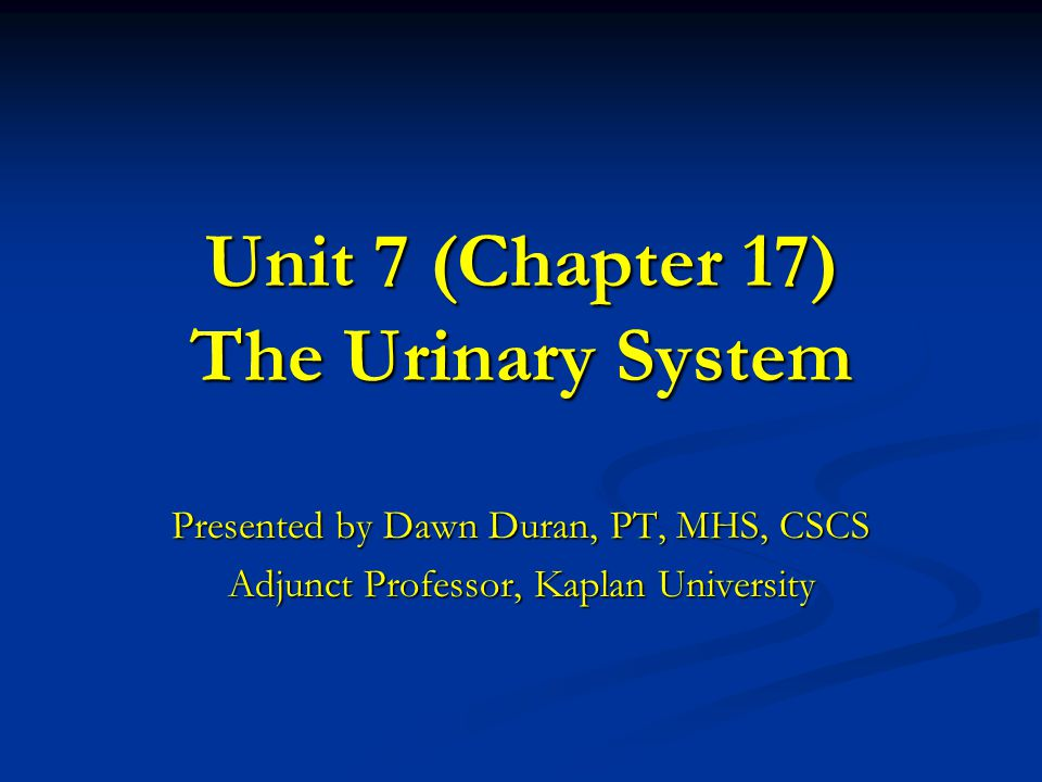 Unit 7 (Chapter 17) The Urinary System
