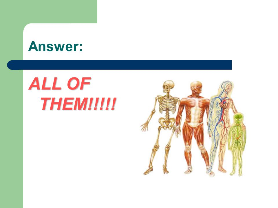 Answer: ALL OF THEM!!!!!