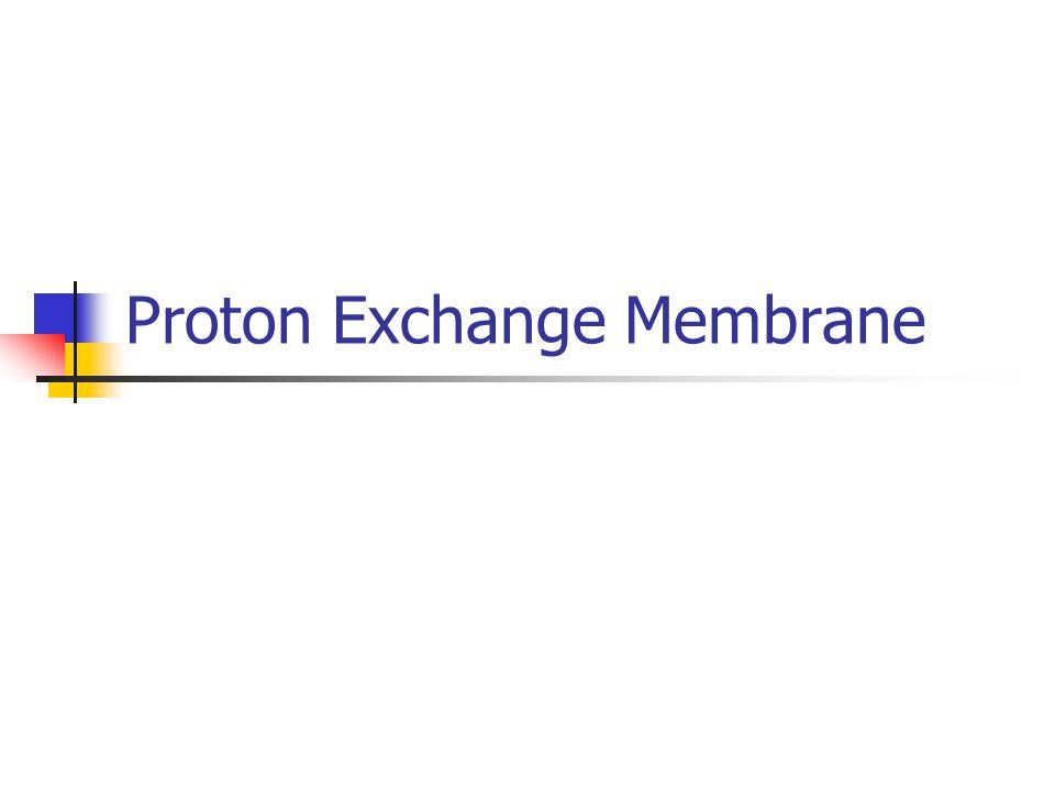 Proton Exchange Membrane
