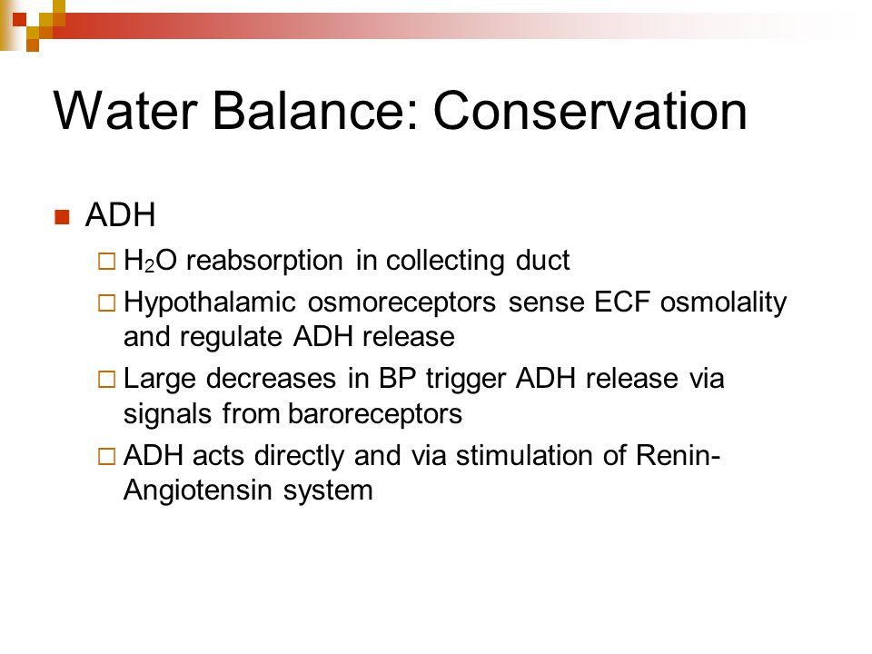 Water Balance: Conservation