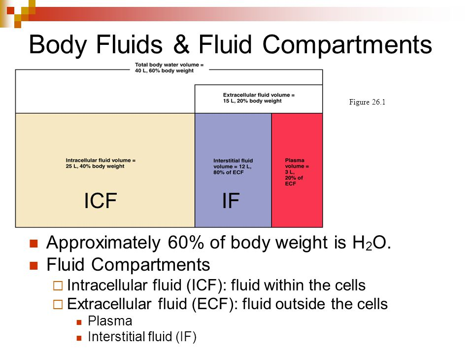 Body Fluids & Fluid Compartments