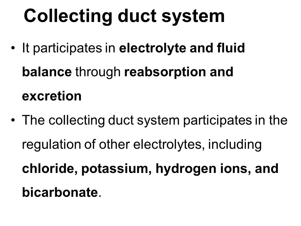 Collecting duct system