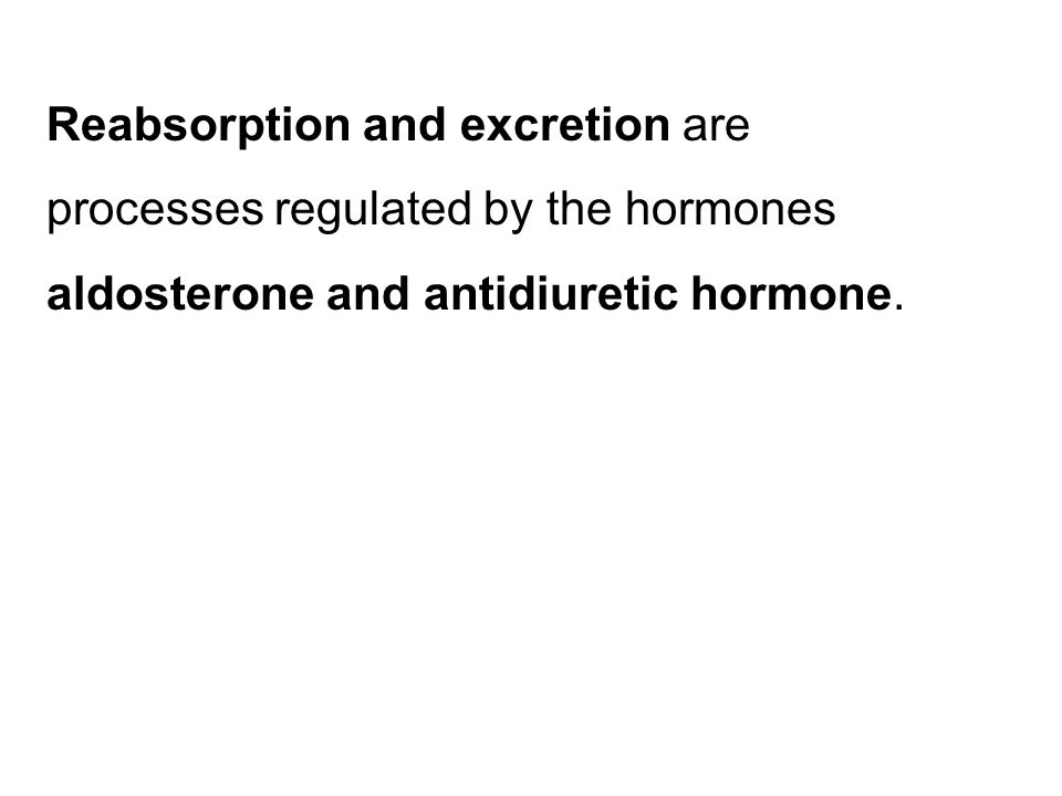 Reabsorption and excretion are processes regulated by the hormones aldosterone and antidiuretic hormone.