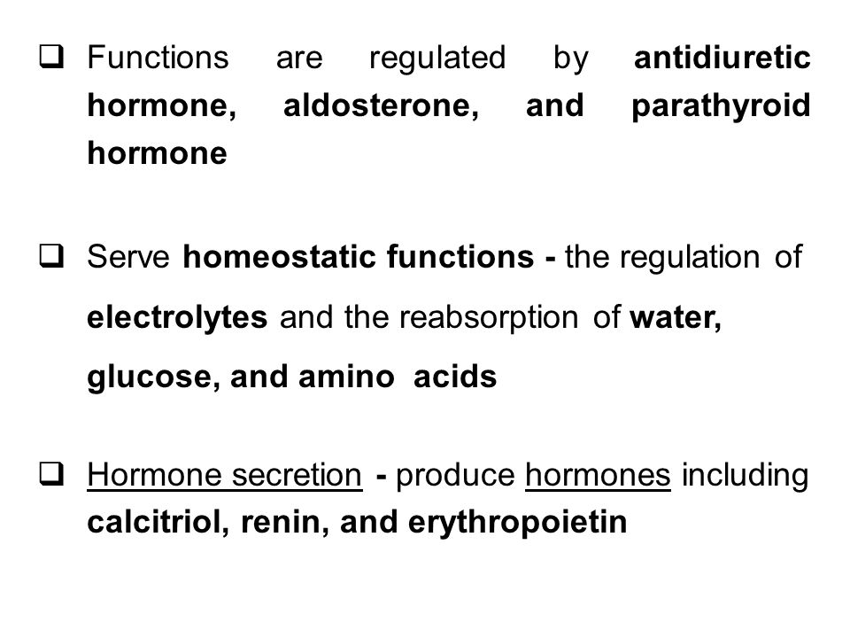 Functions are regulated by antidiuretic hormone, aldosterone, and parathyroid hormone