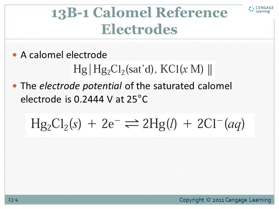 13B-1 Calomel Reference Electrodes