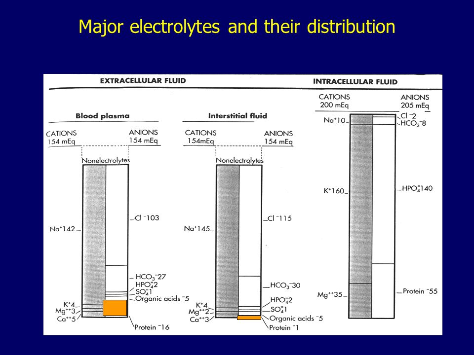 Major electrolytes and their distribution