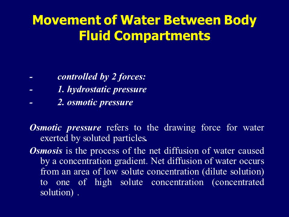 Movement of Water Between Body Fluid Compartments