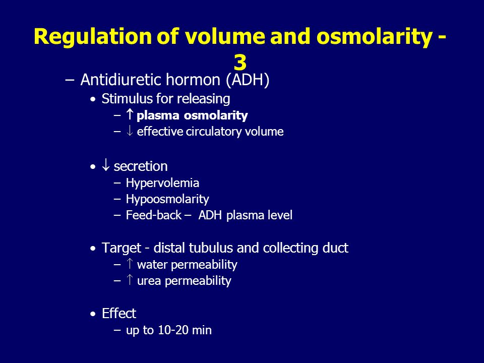 Regulation of volume and osmolarity - 3