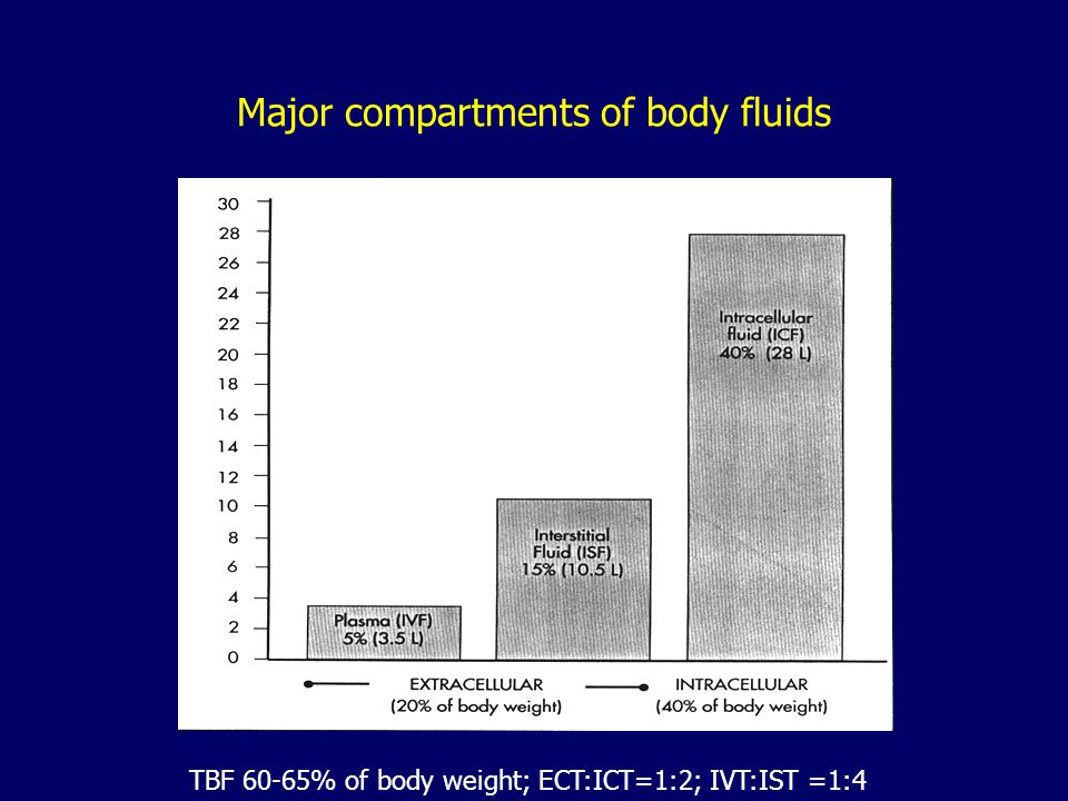 Major compartments of body fluids