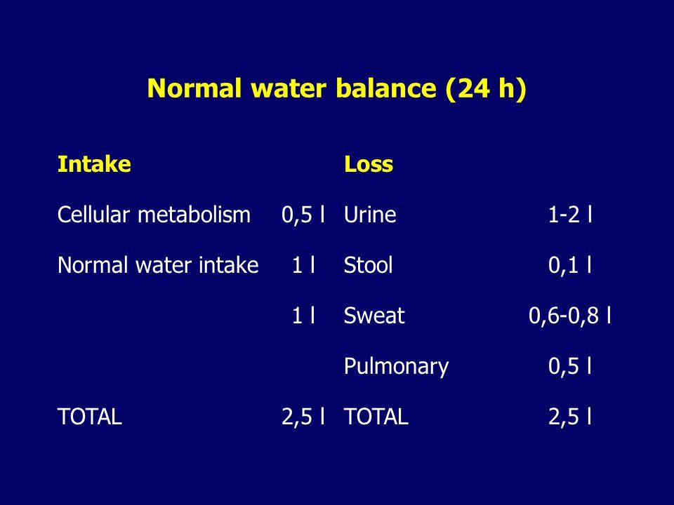 Normal water balance (24 h)
