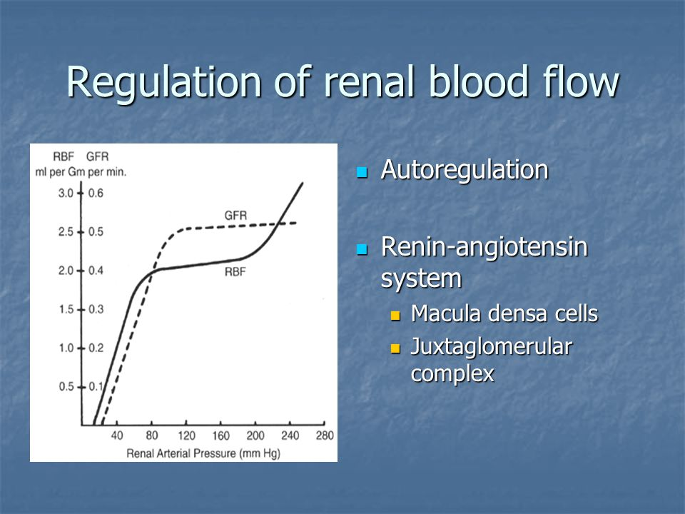Regulation of renal blood flow