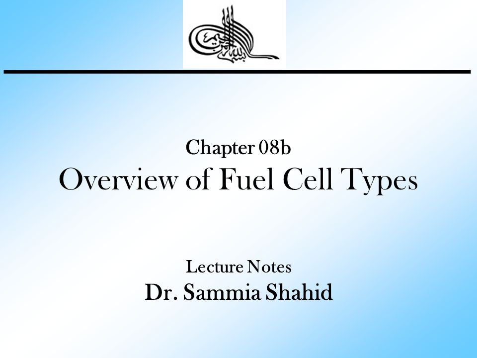 Overview of Fuel Cell Types