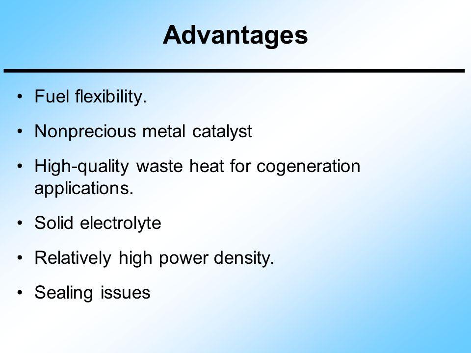 Advantages Fuel flexibility. Nonprecious metal catalyst